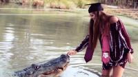 大胆女子给近距离鳄鱼喂食,鳄鱼的反应会怎样?镜头记录全过程!