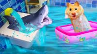 小仓鼠被困水牢,和鲨鱼斗智斗勇,一个动作机智逃出!