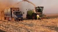 大型的收割机,给农民带来了很多福利