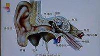 中国医科大学 系统解剖学32