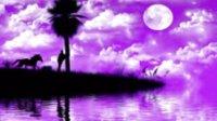 【炫紫色的梦】 冷月伦原创