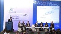 2014亚洲金融论坛:东盟经济体未来的战略机遇