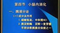 中国医科大学【生理学视频】30