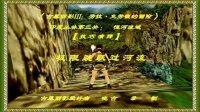 古墓丽影III:印度丛林第三关【技巧演绎】