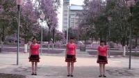 阳光四季美梅广场舞-----(心相印手牵手)