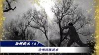 沧州回族武术
