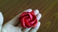折纸玫瑰花大全视频教程 川崎玫瑰花的折法 折纸王子