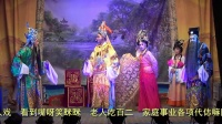 龙海市宝华芗剧团《御园刺驾》字幕超清全剧