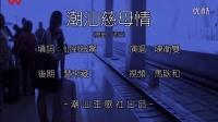 潮汕歪歌社:《潮汕慈母情》陈卫双