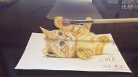 CMH手绘3d立体画 (一只可爱的小猫咪)