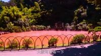 鲜游记第二季日本九州行---第四集勇闯地狱温泉