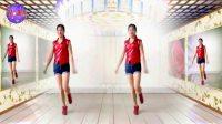 2017简单步子舞《天涯情歌》32步阿采广场舞210 有教学和背面