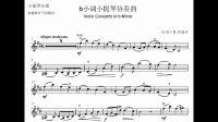 里丁格b小调小提琴协奏曲第一乐章