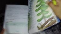 安徒生童话故事《枞树12》讲故事 故事听听 宝宝故事 经典故事小猪佩奇芭比娃娃白雪公主灰姑娘冰雪奇缘动画片故事视频大全 亲子早教 儿童玩具挖掘机视频 汽车总动员