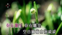兰(王庆爽)