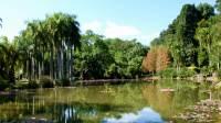水灵灵视频广场 -  旅游相册(我爱你勐巴拉纳西)