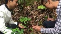 山野美景:俩人上山找竹笋另外的收获,并且发现水源和东西。