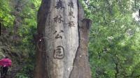 纯天然氧吧-重庆南山凉风垭森林公园