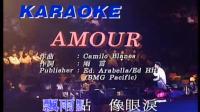 张学友91演唱会:《Amour》