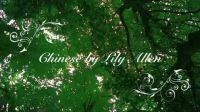 世上最唯美的唱诗班演绎Lily Allen的Chinese[请看右边简介]