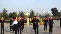 广场舞  美丽的蒙古包   常德桥南副食城道道全健身舞蹈队