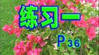 中国人电吉他自学教程AVSEQ02