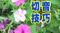 中国人电吉他自学教程AVSEQ04