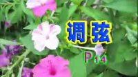 中国人电吉他自学教程AVSEQ01