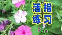 中国人电吉他自学教程AVSEQ03