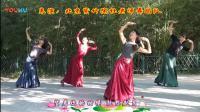 紫竹院广场舞 ——《望月》(带歌词字幕)