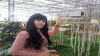 美女歌手经典甜歌精选《女人是世界最美丽的花》(原唱音乐视频)