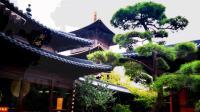 参观游览广富林文化遗址