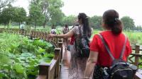 革命常思洪湖水、盘点登上岳阳楼---2019年6月16日红太阳队走进洪湖、岳阳楼