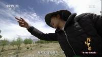 《辉煌中国》 第三集 协调发展