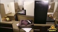 万美元一张的飞机票 坐垫是黄金的吗