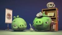 愤怒的小鸟:猪猪传 第一季 20