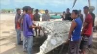 泰国南部海滩发现疑似MH飞机残骸