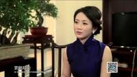 高西庆:为国理财的沉浮岁月