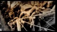 《我们的法兰西岁月》宣传片