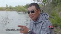 钓鱼视频《钩尖江湖》第十八期 小崔二战勤得利钓获鲤鱼