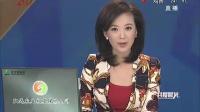 俄罗斯驻日本新潟总领事坠崖身亡