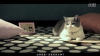 喵星人抢不到-[05集]-【猎豹移动出品】