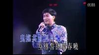 双星情歌 紫色个体演唱会现场版