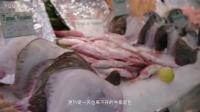 VIKING《游轮带你去旅行》第五集预告片