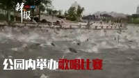 河南公园现鲢鱼跳跃奇观 官方辟谣地震前兆:音响吓的