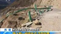 西藏:林芝米林县发生6.9级地震 路上有一些塌方点 正在处置
