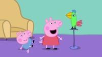 佩奇和喬治跟鹦鹉波利玩得真開心