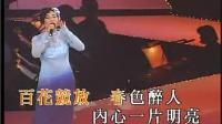 春花万里香 演唱会现场版