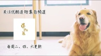《造物集》 Ⅲ10夏季抗敏防晒霜
