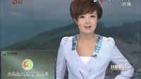 中国演艺界 商界冷淡对日交流